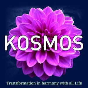 What Does it Mean to be a Global Citizen? – Kosmos Journal