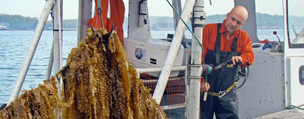 World Water Day | Bren Smith and Restorative Ocean Farming