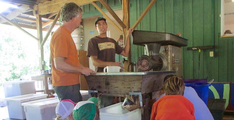 Hyperlocal Heritage   Poi Day in Kauai