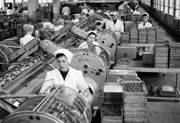 factory-work