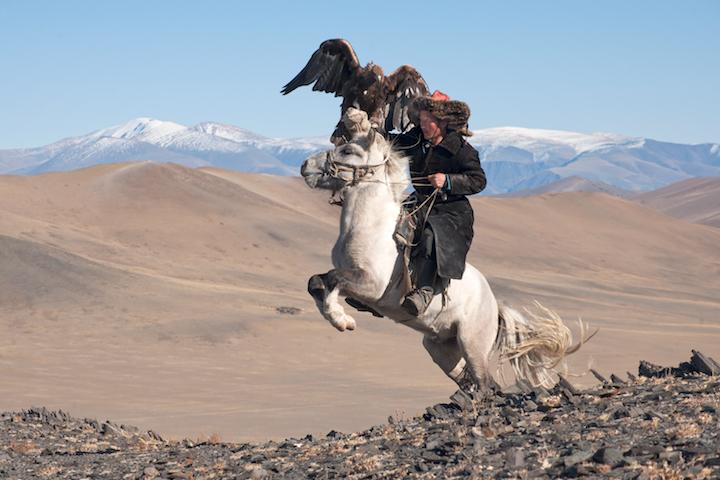 p44white-pegasus-study-i-deloun-highlands-olgii-province-mongolia_2010