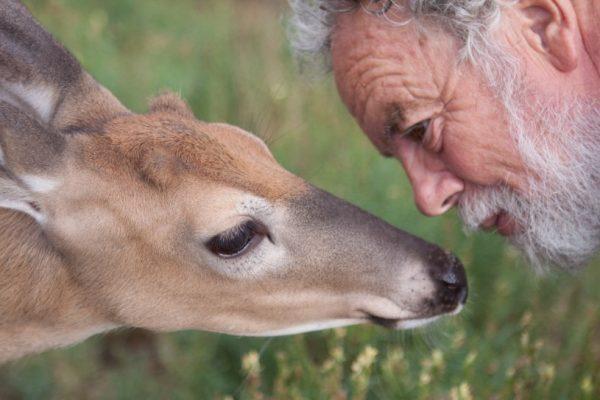 Unheard Invitations: Piercing the Veil Between Species
