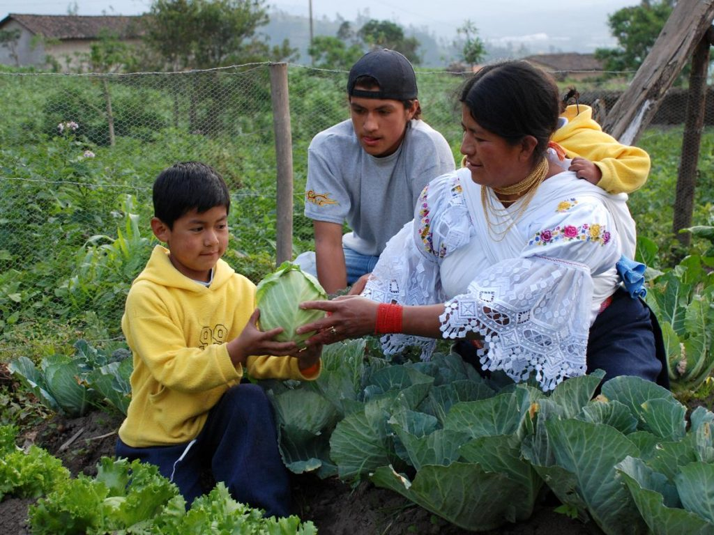 Family food production, Equador