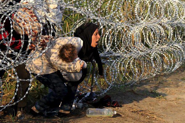 Trail of Fears   The Harrowing Plight of Women Refugees