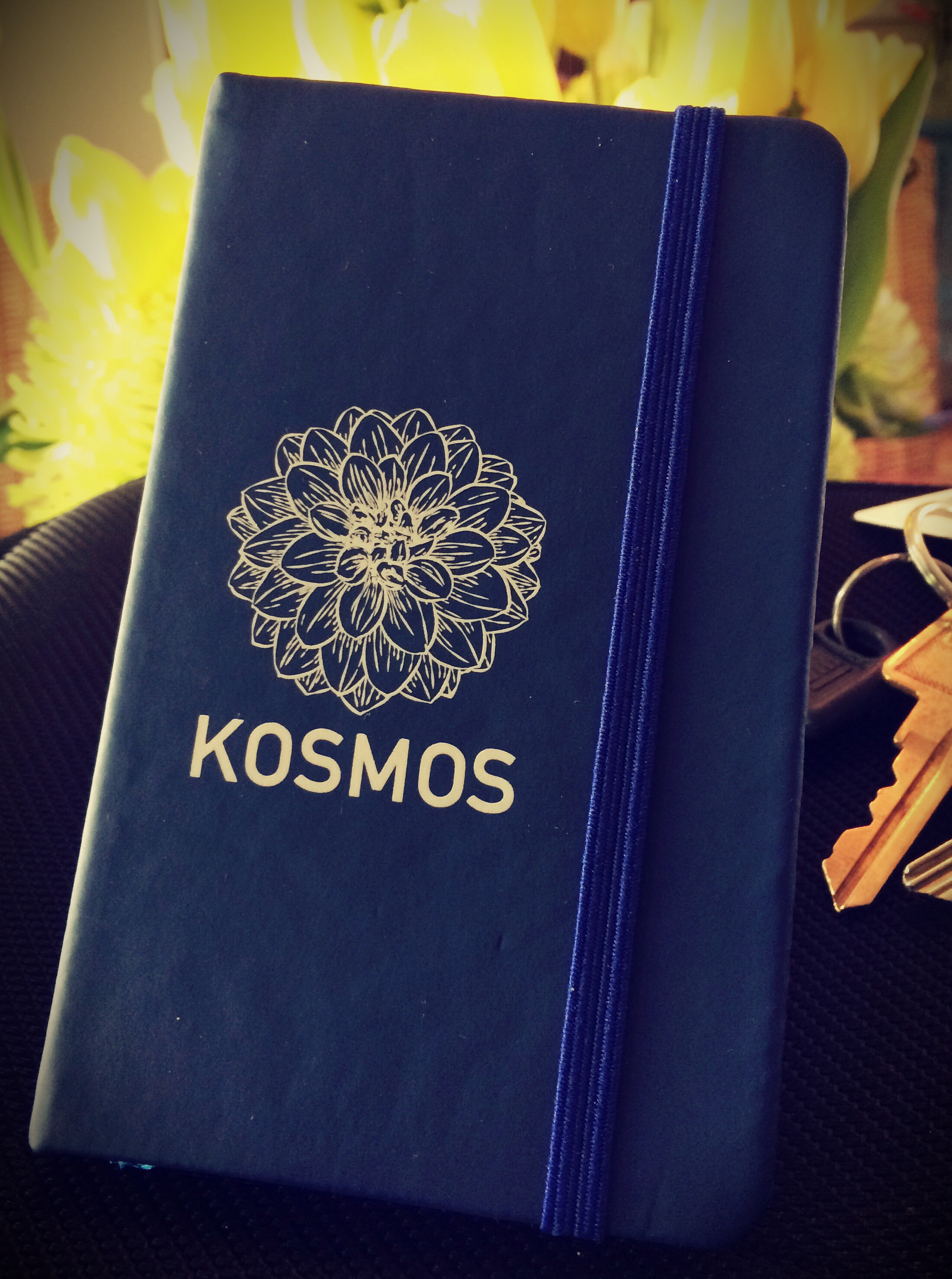 The Kosmos Blue Pocket Diary, Our Gift to You