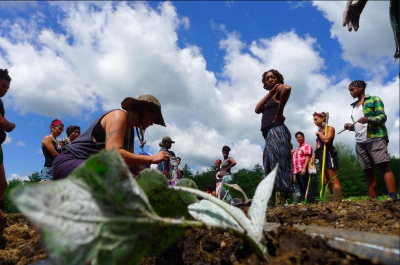 Farming While Black – Kosmos Journal