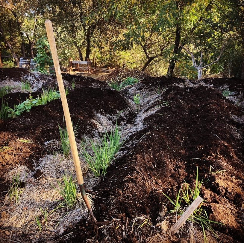 Inoculated compost enriches the vitality of soils in Sonoma County by transforming locally sourced elements into new life.
