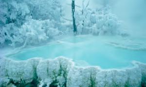 Winter | Michael Quinton