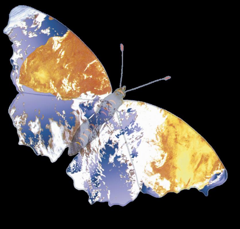 butterflygen