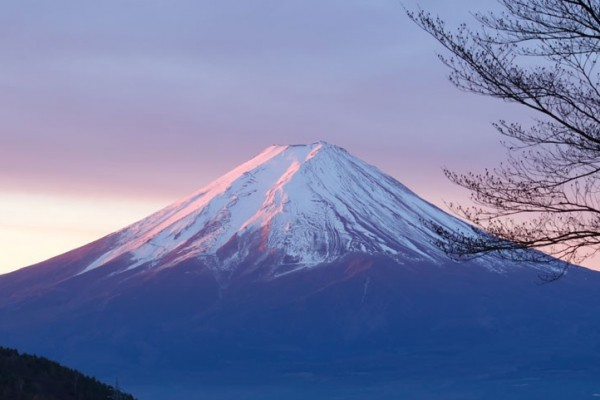 Why The Fuji Declaration? What It Means for Our Life and Our Future